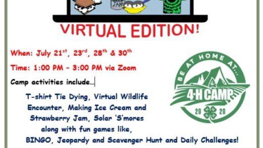 7/6 UT TSU Extension Polk County 4-H Camp 2020 (Virtual Edition!) Application Deadline