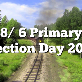8/ 6 Primary Election Day 2020