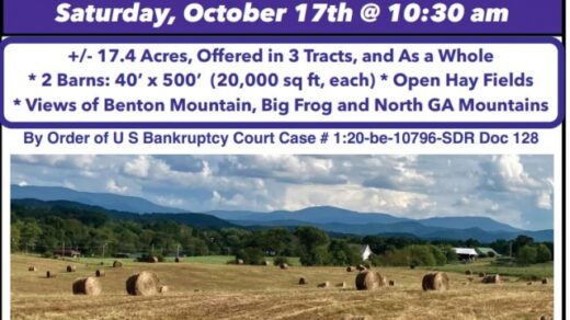 10/17 Court Ordered Auction Old Fort, TN