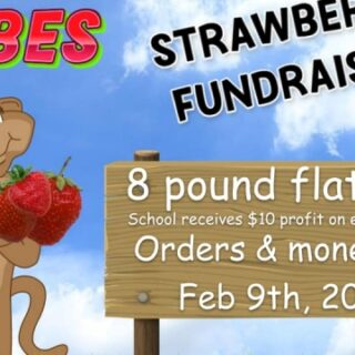 Copper Basin Elementary School Strawberry Fundraiser GOING ON NOW!