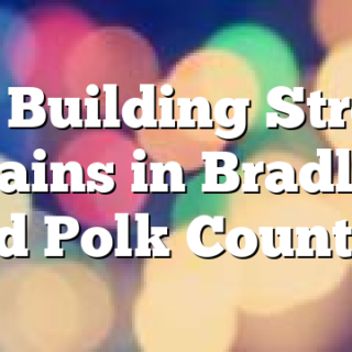 4/8 Building Strong Brains in Bradley and Polk Counties
