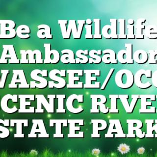 Be a Wildlife Ambassador HIWASSEE/OCOEE SCENIC RIVER STATE PARK